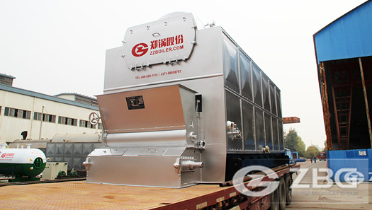 6 ton DZL biomass boiler in Indonesia
