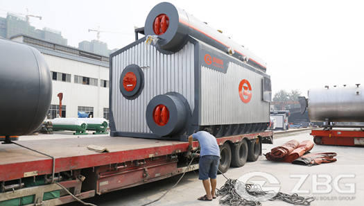 8 TPH capacity gas fired steam boiler for instant noodle factory in Sri Lanka