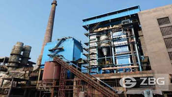 Power plant boilers for cogeneration